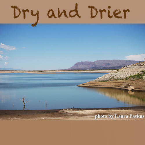 Laura Paskus, The NM Political Report - Drought and Climate Change Fry NM