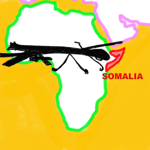 Amanda Sperber, for The Nation - Who's Being Killed by US Attacks in Somalia?