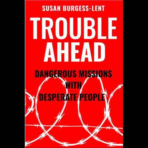 Susan Burgess Lent, Author - Making Humanitarian Aid Effective