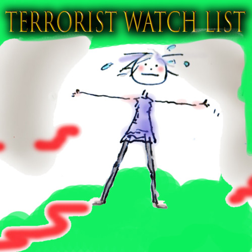 Dave Lindorff, Investigative Reporter - Terrorist Watchlist Easier to Get On Than Off