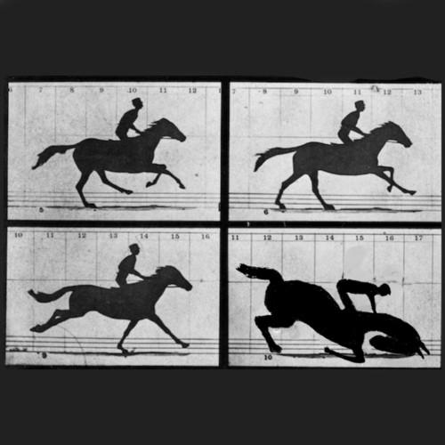Tarpley Hitt, The Daily Beast - Horse Racing Breaks Down